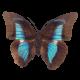 Vedunika аватар