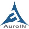 AuroIN SEO