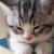 frisbyy's avatar