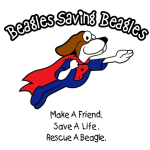 Profile picture of Beagle Rescue
