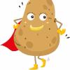 Ju - Wonder Patate