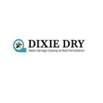 Dixiedry