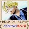 cokino2012