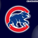 Cubs Dude&#39;s Photo
