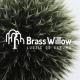 michal@brasswillow.pl'