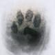 HnKUMP's avatar