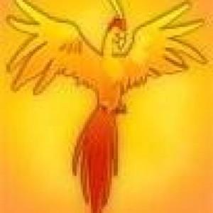 Profile picture for Phoenix2 Life