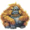 Greg Gone at Stirling - last post by gorilla