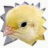 Profile photo of Chickypez