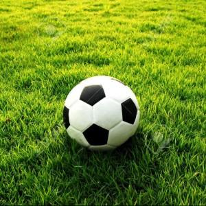 Profile picture for Torneo Il Calcio
