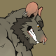Profile picture of rat