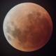 Horrgs's avatar