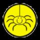 spiderlane