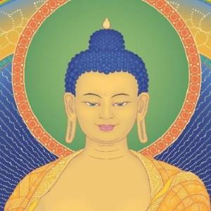Profile picture for centroshakyamuni