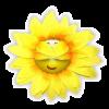 *Sunflo*