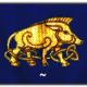cilibinarii's avatar