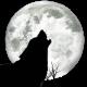 TheWolfbane's avatar