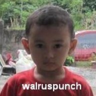 walruspunch