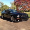 Eureka Springs, Ark.  Mustang Show This Saturday - last post by zachman