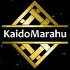 Kaido's Photo
