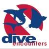 Dive encounters's Photo