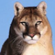 CougRon's avatar