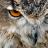 Camel_Clutch's avatar