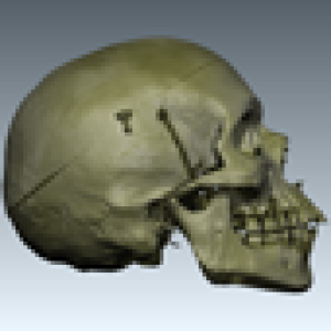 Profile picture for Behold 3D