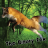 Avatar of TheBinaryFox