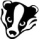 BadgerUE