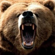 bearss