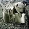 Cheap BitTorrent Sync hosting? - last post by reddhead