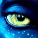 Forum Nightwish PL user avatar image