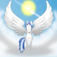 SkySlicer