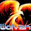Wolvan's Photo