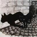 ShadowCat7