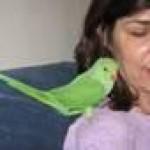 Linda Levitt's picture