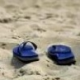 Profile picture of mfisher