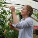 Mon blog jardin
