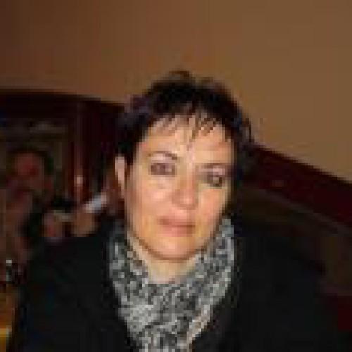 מאיה שטיין