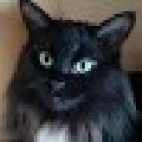 user1333935
