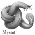 Profile picture of Myxini