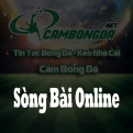 Profile picture of Sòng Bài Online