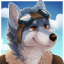 AviatingWolf