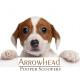 arrowheadscoopers