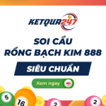 Profile picture of Rồng Bạch Kim 247 Ads