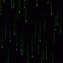 DataBitz's Avatar