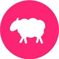 Profile picture of onesheep