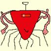 Morlette Profile Picture