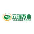 Yunrui